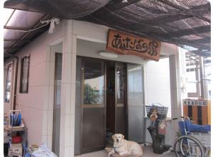 img_ashitaba